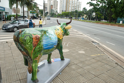 cow2010 na rua I064