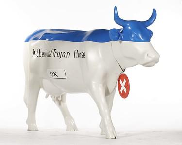 Krowa Trojanska - 21