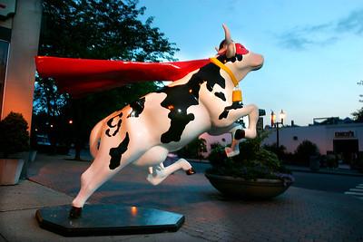 Super Cow - B - WH027