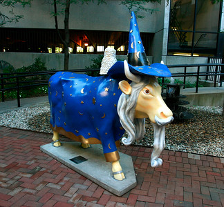 Wizard Cow - B - WH050