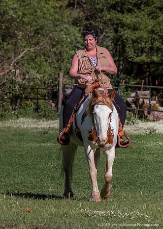 Cowboy Dressage Clinic | April 2019  Thursday