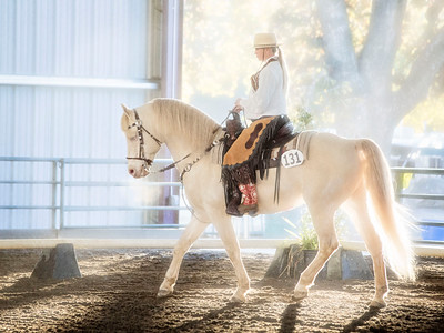 2013 Cowboy Dressage World Gathering