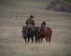 Yolo_Land_&_Cattle_1-5-13January_04,_2013IMG_4419untitled