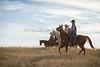 11-23 Yolo Land & CattleIMG_8387-Edit