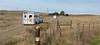 11-23 Yolo Land & Cattle_N5A9937