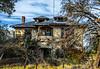 11-23 Yolo Land & Cattle_N5A9941-Edit