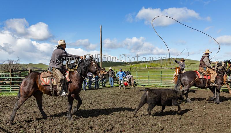 Mark Elworthy Ranch-9593