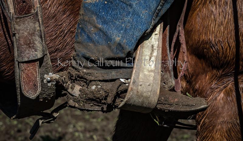 Mark Elworthy Ranch-9242