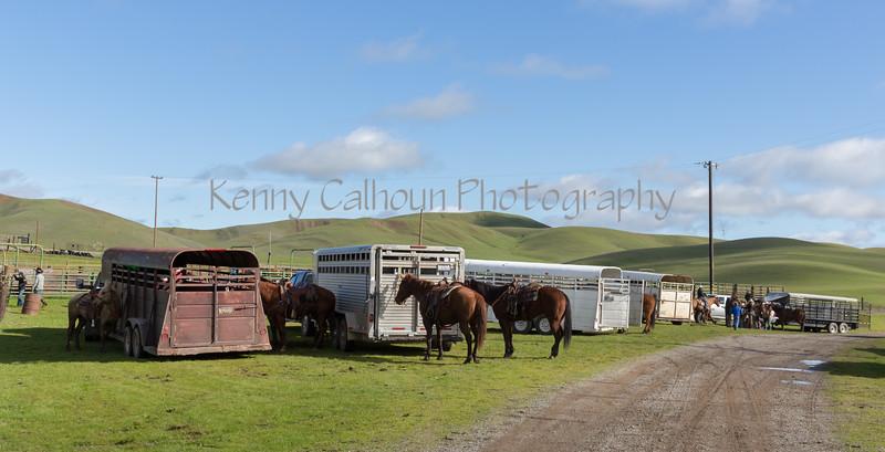 Mark Elworthy Ranch-8423