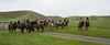 Mark Elworthy Ranch-7821