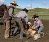 Mark Elworthy Ranch-9506