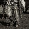 Mark Elworthy Ranch--27
