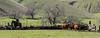 Mark Elworthy Ranch-9696-2