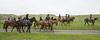 Mark Elworthy Ranch-7829
