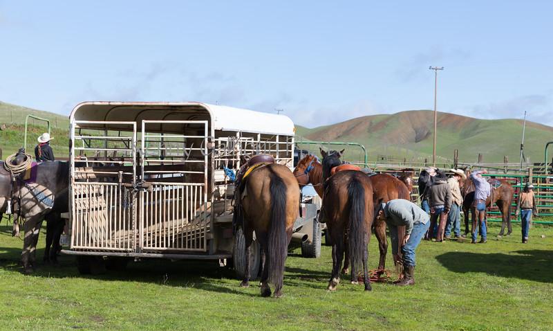 Mark Elworthy Ranch-8433