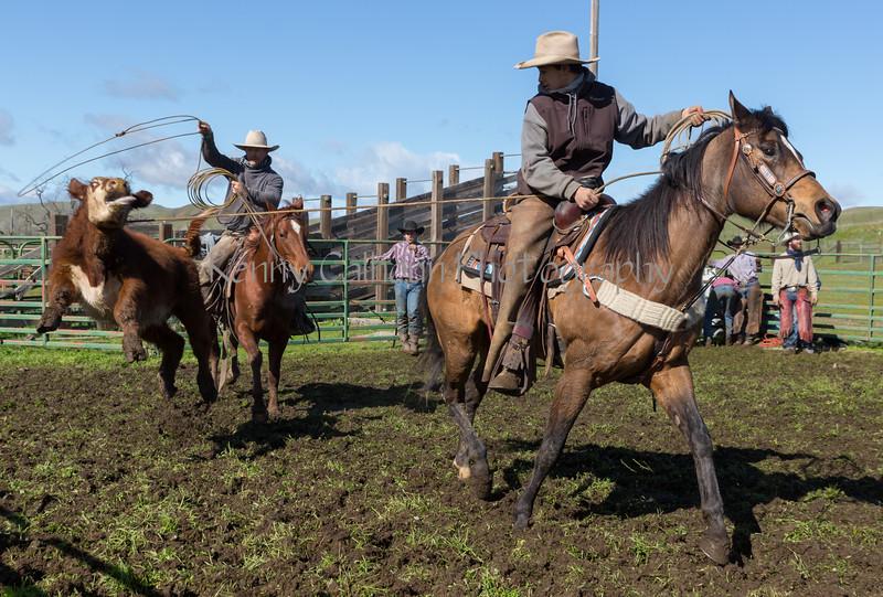 Mark Elworthy Ranch-9035
