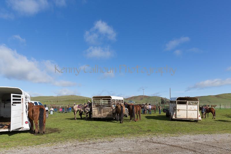 Mark Elworthy Ranch-8430