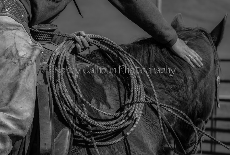 Mark Elworthy Ranch--20