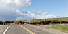Mark Elworthy Ranch-9886