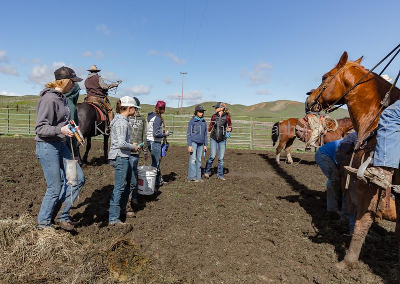 Mark Elworthy Ranch-9554