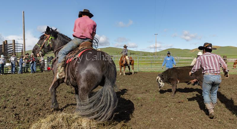 Mark Elworthy Ranch-9539