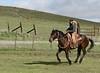 Mark Elworthy Ranch-8262