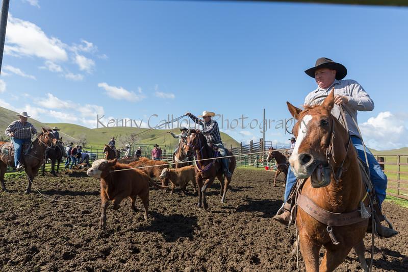 Mark Elworthy Ranch-9217