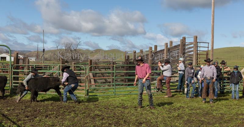 Mark Elworthy Ranch-8735