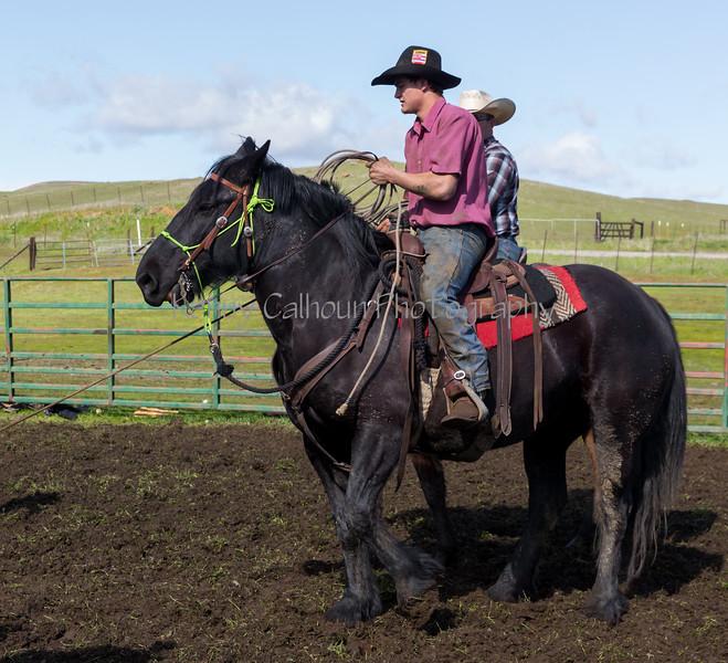 Mark Elworthy Ranch-9382
