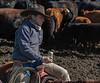 Mark Elworthy Ranch-9585