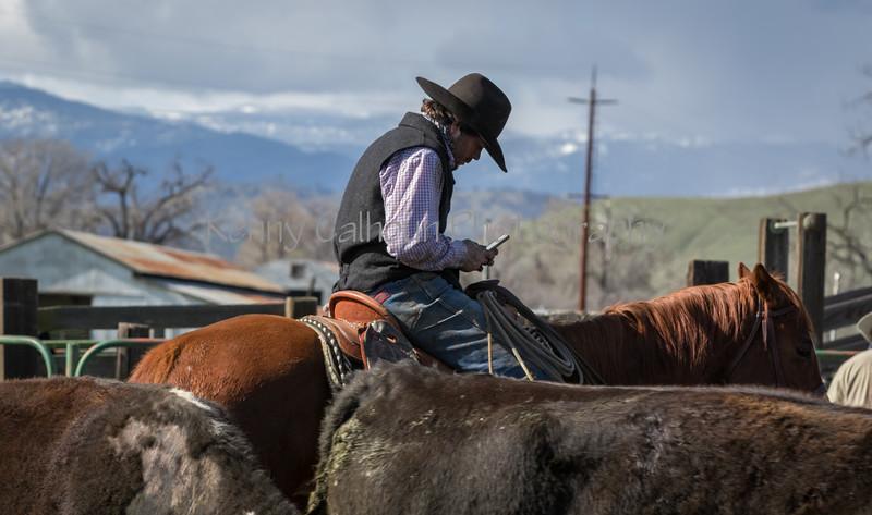Mark Elworthy Ranch-9617