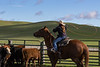 Mark Elworthy Ranch-8794