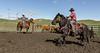 Mark Elworthy Ranch-9531