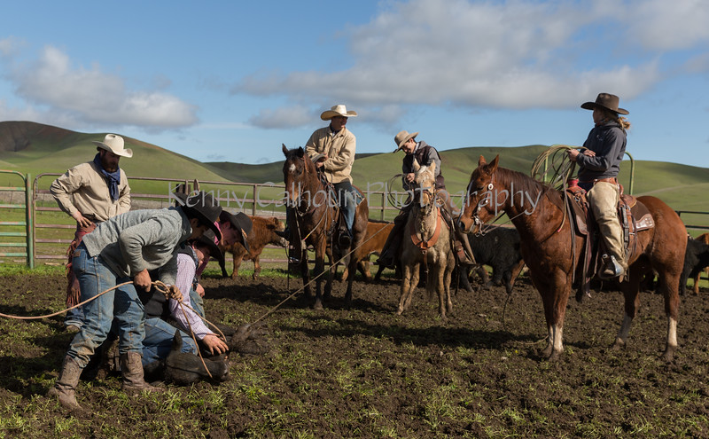 Mark Elworthy Ranch-8691
