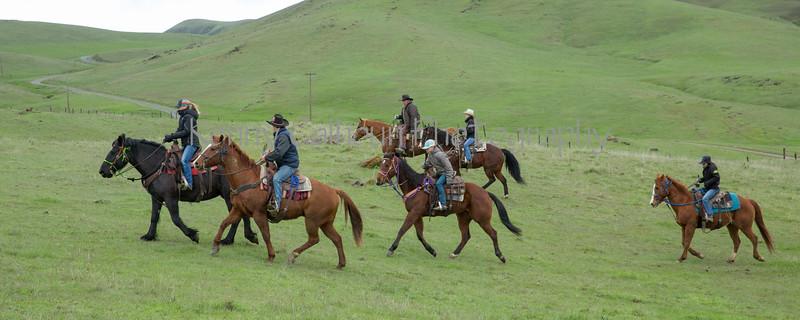Mark Elworthy Ranch-7871