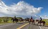 Mark Elworthy Ranch-9921