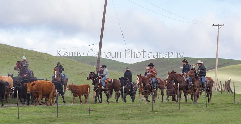 Mark Elworthy Ranch-8045