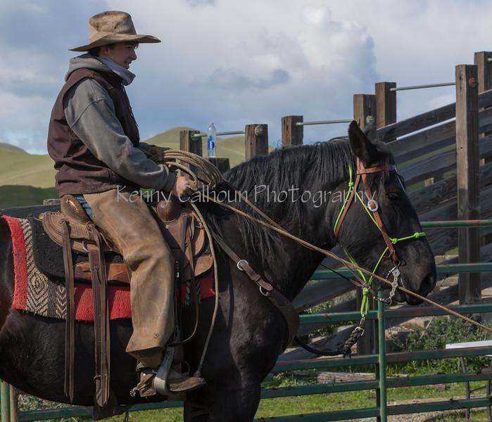 Mark Elworthy Ranch-9475-2