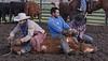 Mark Elworthy Ranch-9505