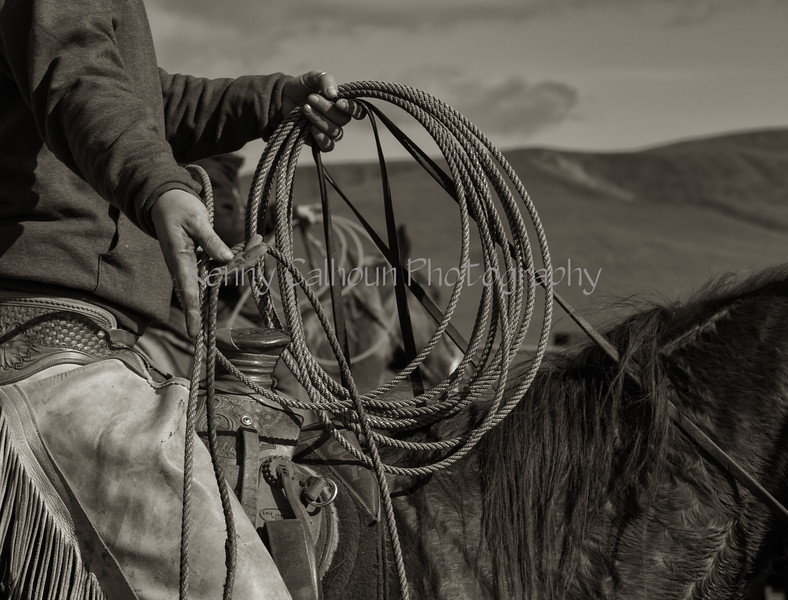 Mark Elworthy Ranch--10