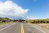 Mark Elworthy Ranch-9903