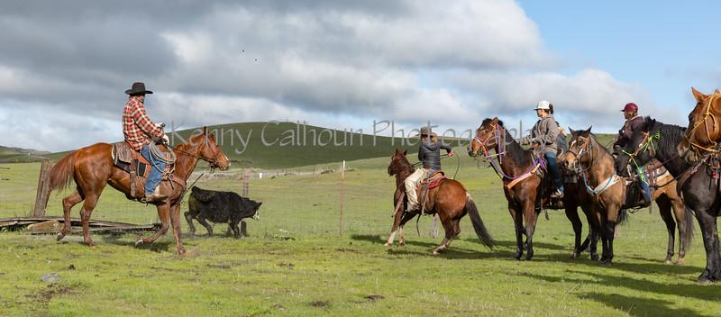 Mark Elworthy Ranch-8116