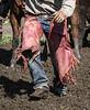 Mark Elworthy Ranch-9396