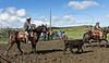 Mark Elworthy Ranch-9592