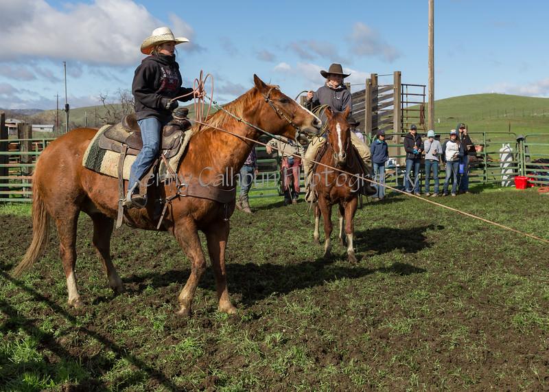 Mark Elworthy Ranch-8886