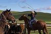 Mark Elworthy Ranch-8797