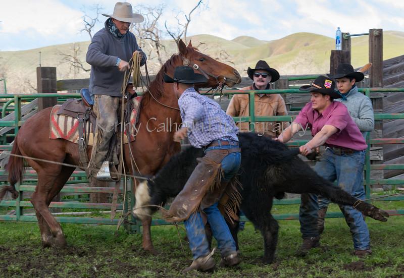 Mark Elworthy Ranch-8976