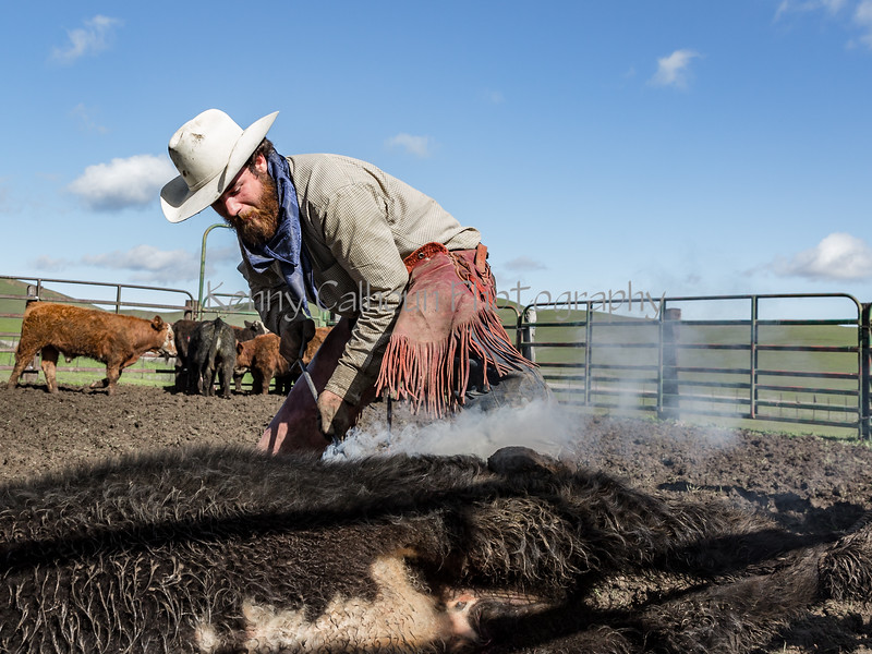 Mark Elworthy Ranch-9694