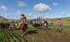 Mark Elworthy Ranch-8726