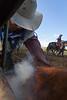 Mark Elworthy Ranch-9732